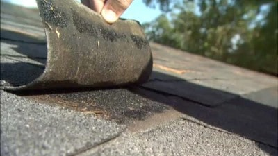 adhesive for flat roof
